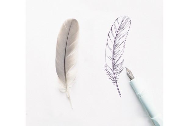 Drawing20feathers20styled203-c789281