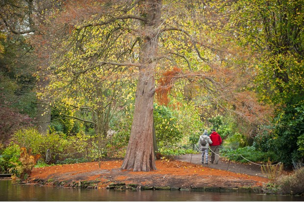 Dunham Massey ©National Trust Images Paul Harris