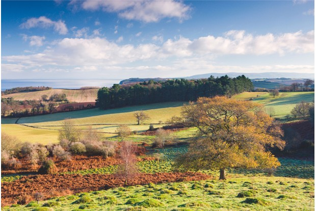 Looking east from Dunster Park across the Bristol Channel and Quantock Hills