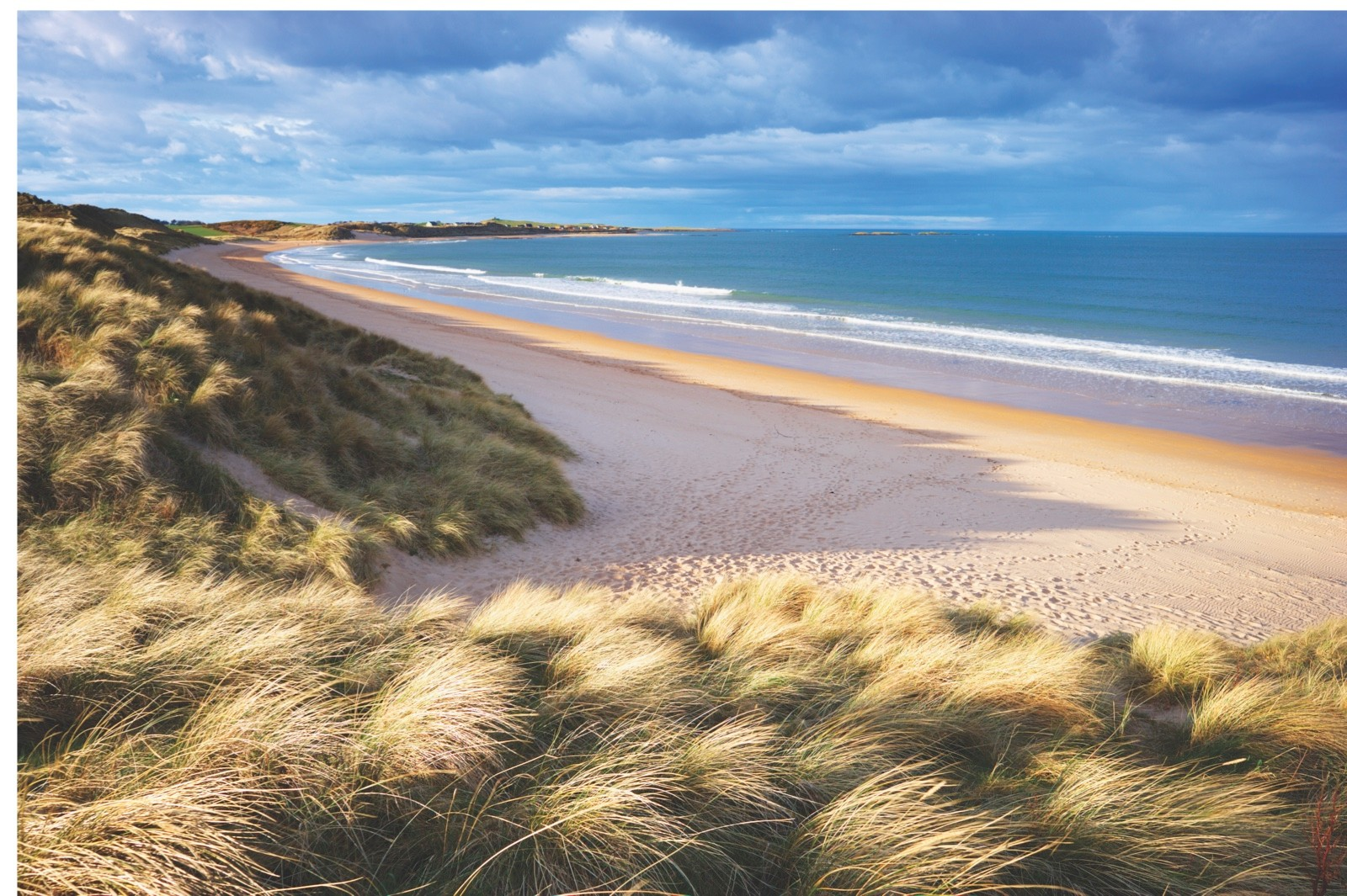 600-05803635 © Tim Hurst Model Release: No Property Release: No  Grass Covered Dunes and Sandy Beach of Embleton Bay, Northumberland, England