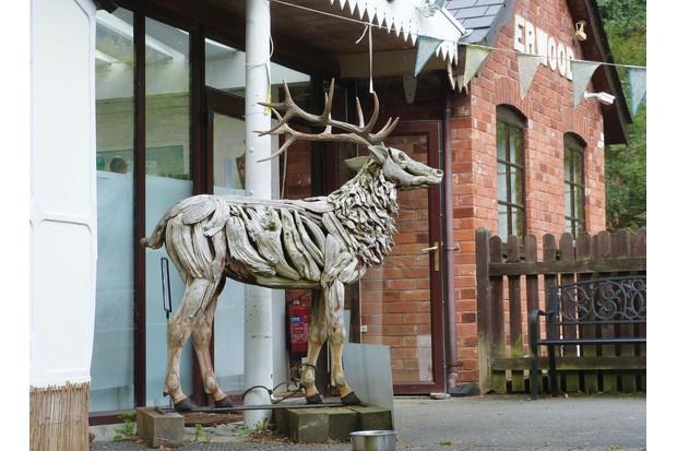 Erwood-station-gallery-deer-6f30d51