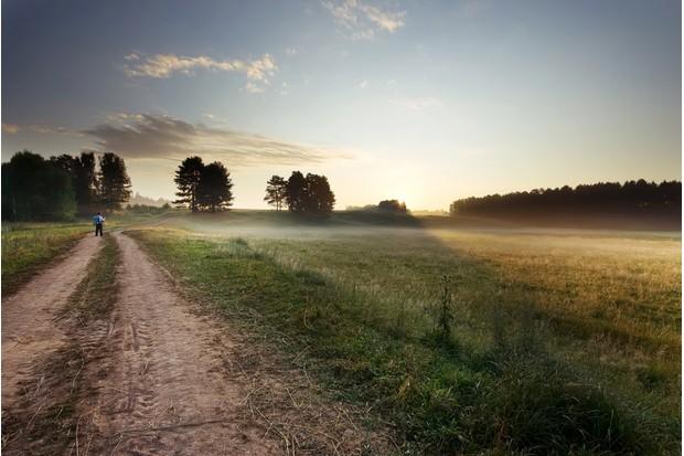 Fields near Wadebridge