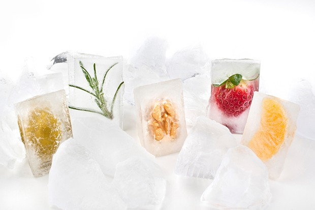 Ice Cubes with Vegetables. (Photo by: Hermes Images/AGF/UIG via Getty Images)