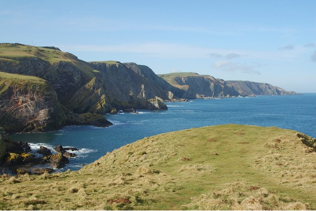 coast landscape with cliffs & sea at St. Abbs Head