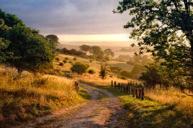 Countrylane in chiltern hills at dawn, Hertfordshire/Buckinghamshire border, England, UK.