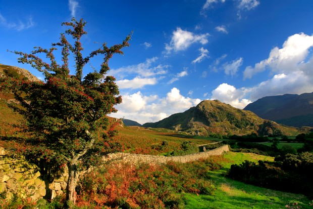 Blue skies over Rannerdale Knotts and the surrounding fells at Crummock Water in the Lake District.