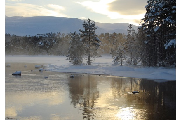 Loch Morlich, which is situated in the Cairngorm National Park, Scotland
