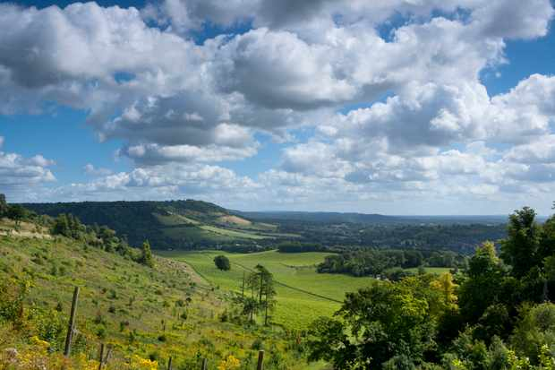 Distant view of Box Hill, near Dorking, Surrey Hills, North Downs, Surrey, England, United Kingdom, Europe