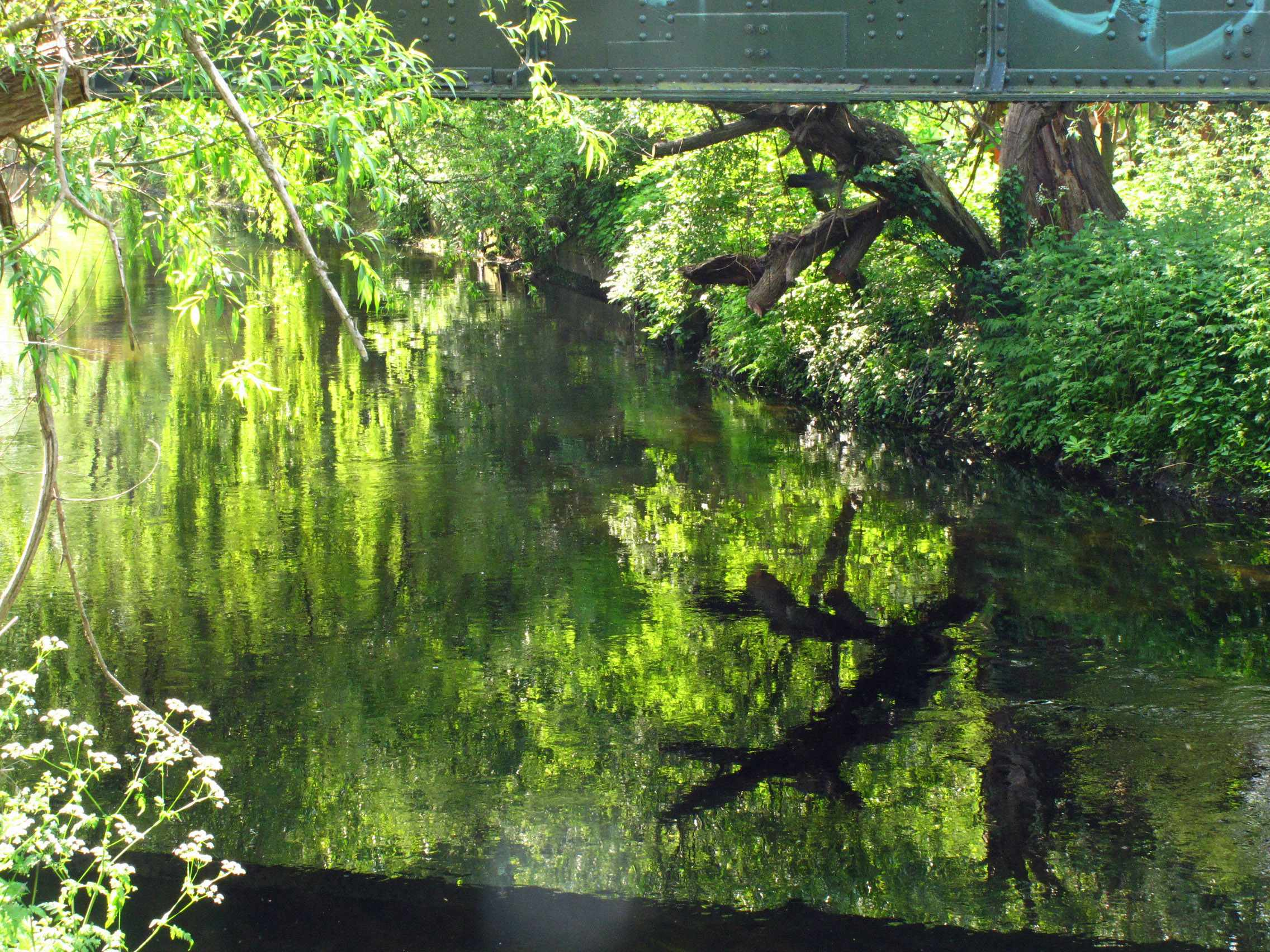 The River Wandle in Wandsworth.