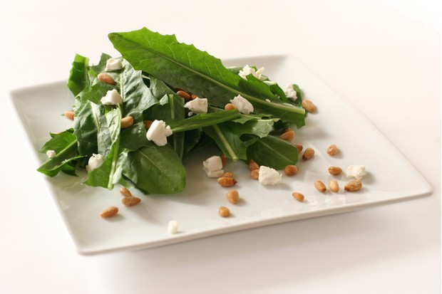 """Spring dandelion greens with goat cheese and toasted pine nuts. Not isolated, shot on white"""