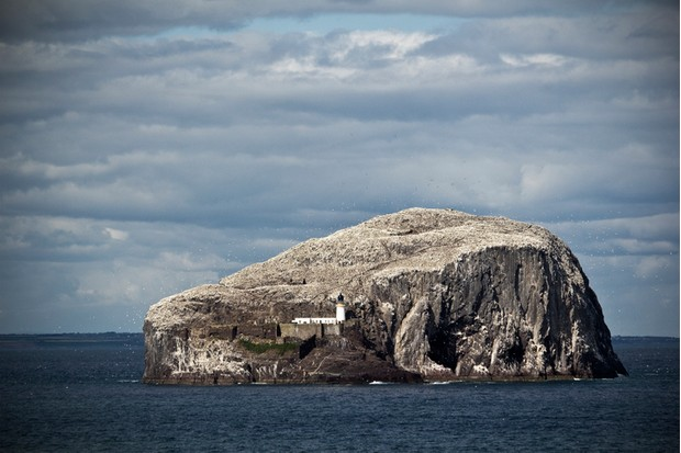The rocky island of Bass Rock off the east cost of Scotland. Home to one of the largest colonies of gannets.