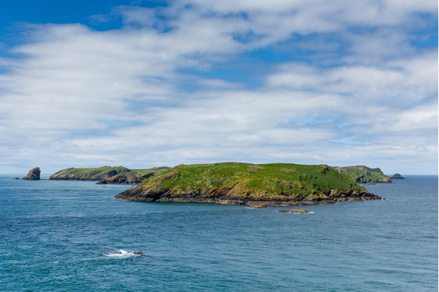 Skomer Island Pembrokeshire West Wales known for Puffins, wildlife and a National Nature Reserve.   In Welsh known as Ynys Sgomer.