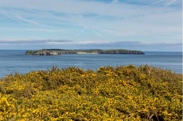 Caldey Island Pembrokeshire Wales from Lydstep. Next to Tenby and Manorbier