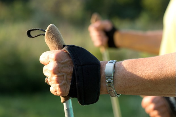 hands with nordic walking sticks closeup