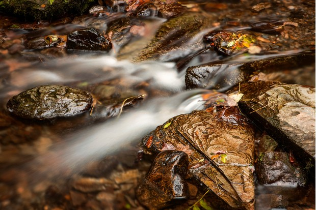 Stones and leaves in the river in autumn