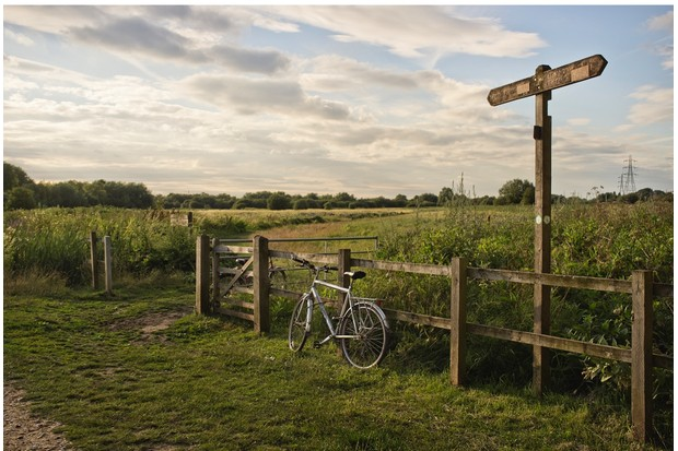 LONDON, UNITED KINGDOM - 2014/07/14: A view of the Walthamstow Marshes. (Photo by Andrea Baldo/LightRocket via Getty Images)