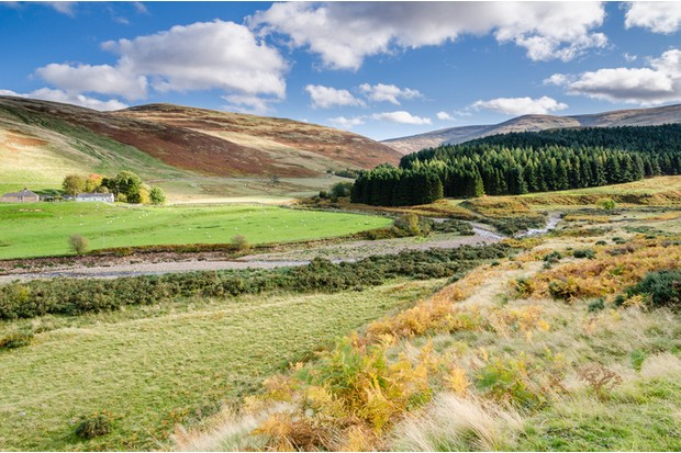 College Valley is an area of tranquillity and natural beauty in north Northumberland
