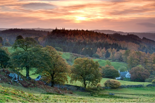 Dawn Over the Gwydyr Forest in Autumn, Near Betws-y-coed, Snowdonia National Park, North Wales