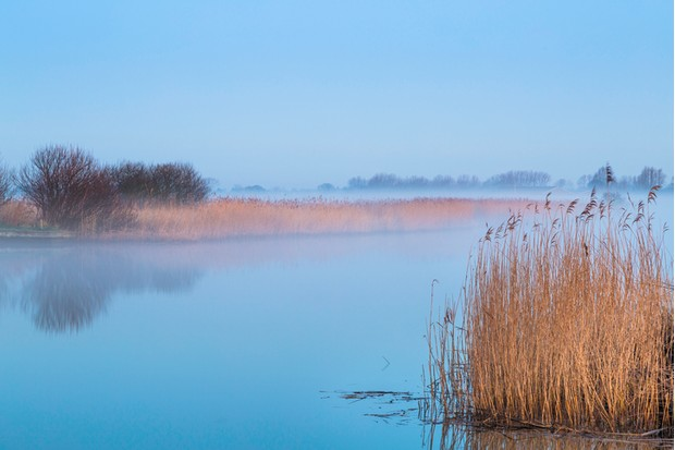 A tranquil dawn on the River Thurne in the Norfolk Broads.