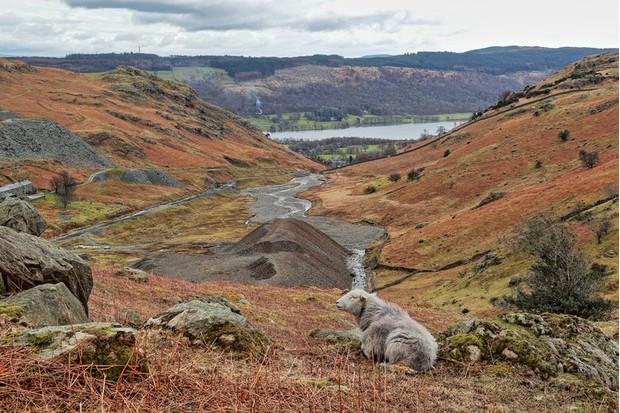 Coniston Coppermine, Lake District, England