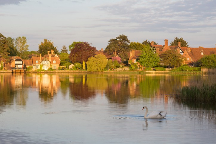 Autumn scene of Beaulieu Pond in The New Forest National Park with a white swan