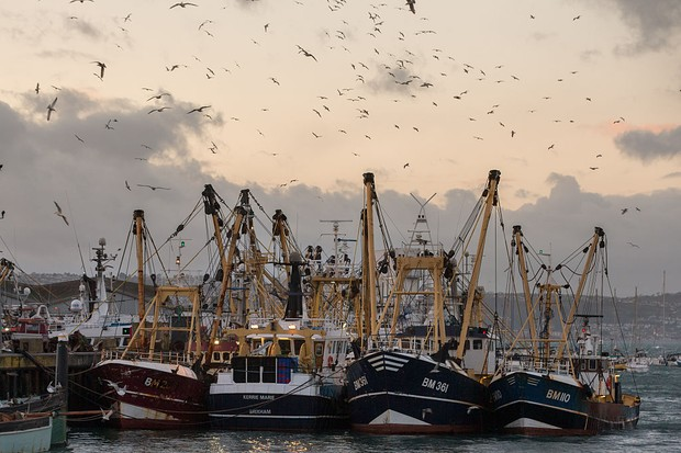 BRIXHAM, ENGLAND - MARCH 02:  Fishing boats moored in Brixham harbour  on March 2, 2016 in Devon, England. The UK's fishing industry is likely to be radically affected by the outcome of the EU referendum that the UK electorate will vote on June 23. Currently under the EU's Common Fisheries Policies (CFP), quotas are imposed on UK fishermen and it also grants equal access to other European fishing fleets to the UK 200-mile exclusive economic zone around the UK coastline whilst preserving a 12-mile zone for exclusive UK boats. However if the UK votes to leave the UK would regain full control over its 200-mile fishing zone, although bilateral agreement with other fishing nations could require granting access on a quid pro quo basis and there is uncertainty about the potential loss of export markets.  (Photo by Matt Cardy/Getty Images)