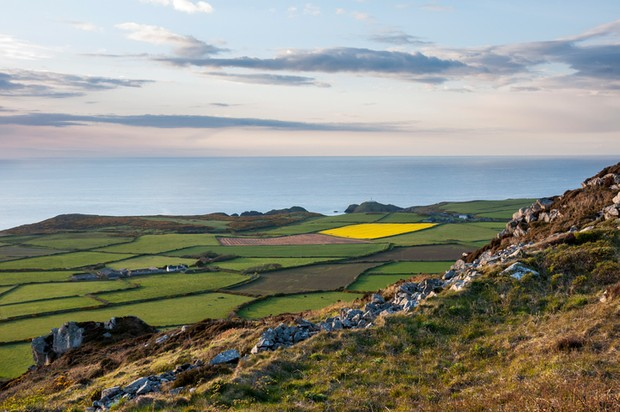 Patchwork landscape of green fields on the coast of west Wales. The lighthouse at Strumble head can be seen below.