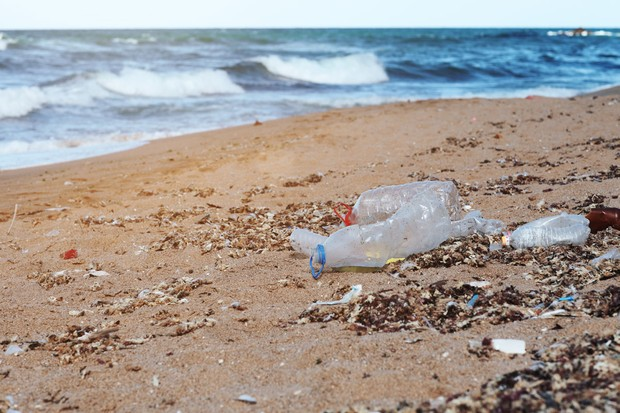 Plastic bottles take around 450 years to break down in the sea