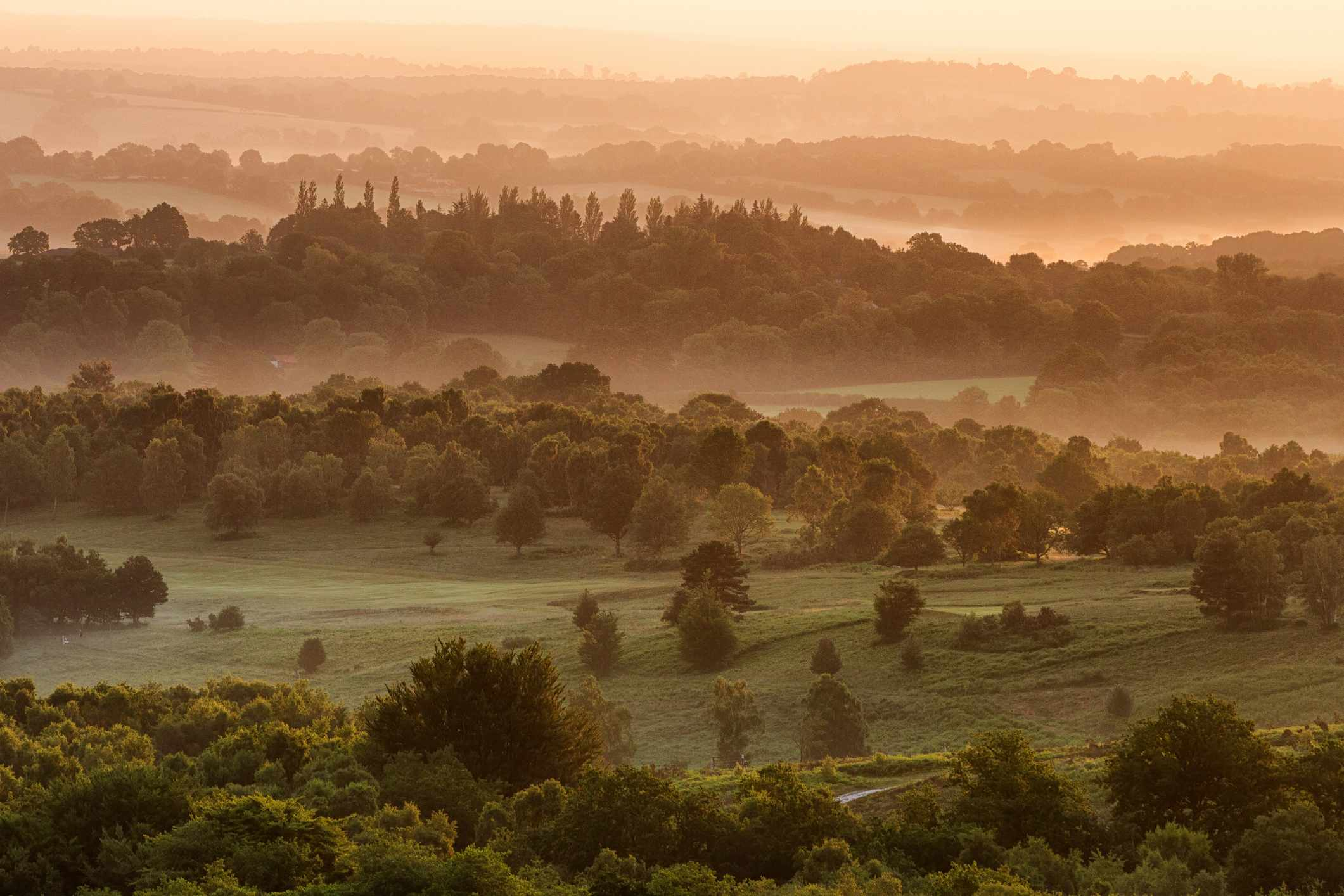 Sunrise looking over the weald of ashdown forest in sussex, UK
