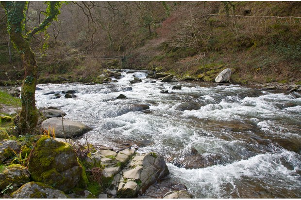 Confluence of East Lyn River and Hoar Oak water at Watersmeet, Exmoor national park, near Lynmouth, Devon, England (Photo by: Education Images/UIG via Getty Images)