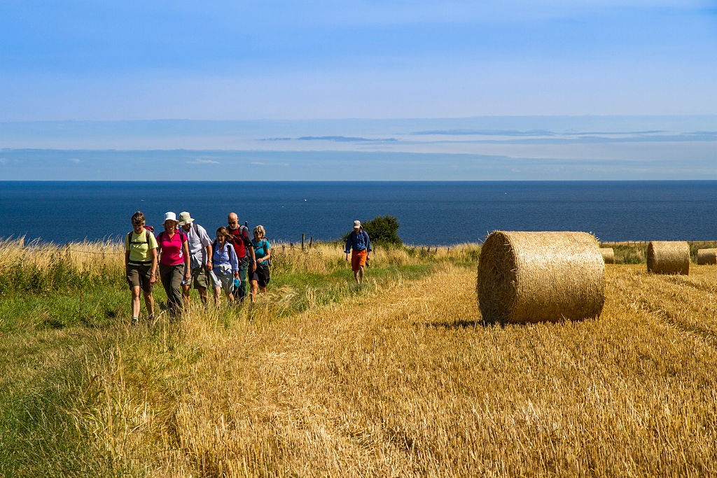 Walkers on the Cleveland Way. (Photo by: Loop Images/UIG via Getty Images)