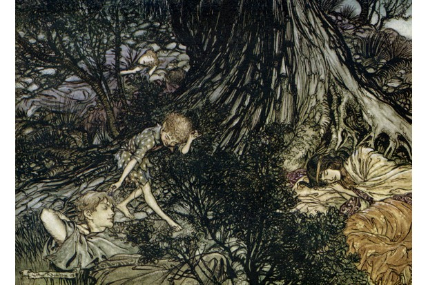 A Midsummer Night's Dream. Illustration by Arthur Rackham (1867 - 1939) to the play by William Shakespeare. Act 3 scene 2, Lysander, Demetrius, Hermia and Helena sleep and Puck squeezes the flower juice on Lysander's eyes: 'On the ground / Sleep sound: / I'll apply / To your eye, / Gentle lover, remedy' English poet and playwright baptised 26 April 1564 Ð 23 April 1616. (Photo by Culture Club/Getty Images)