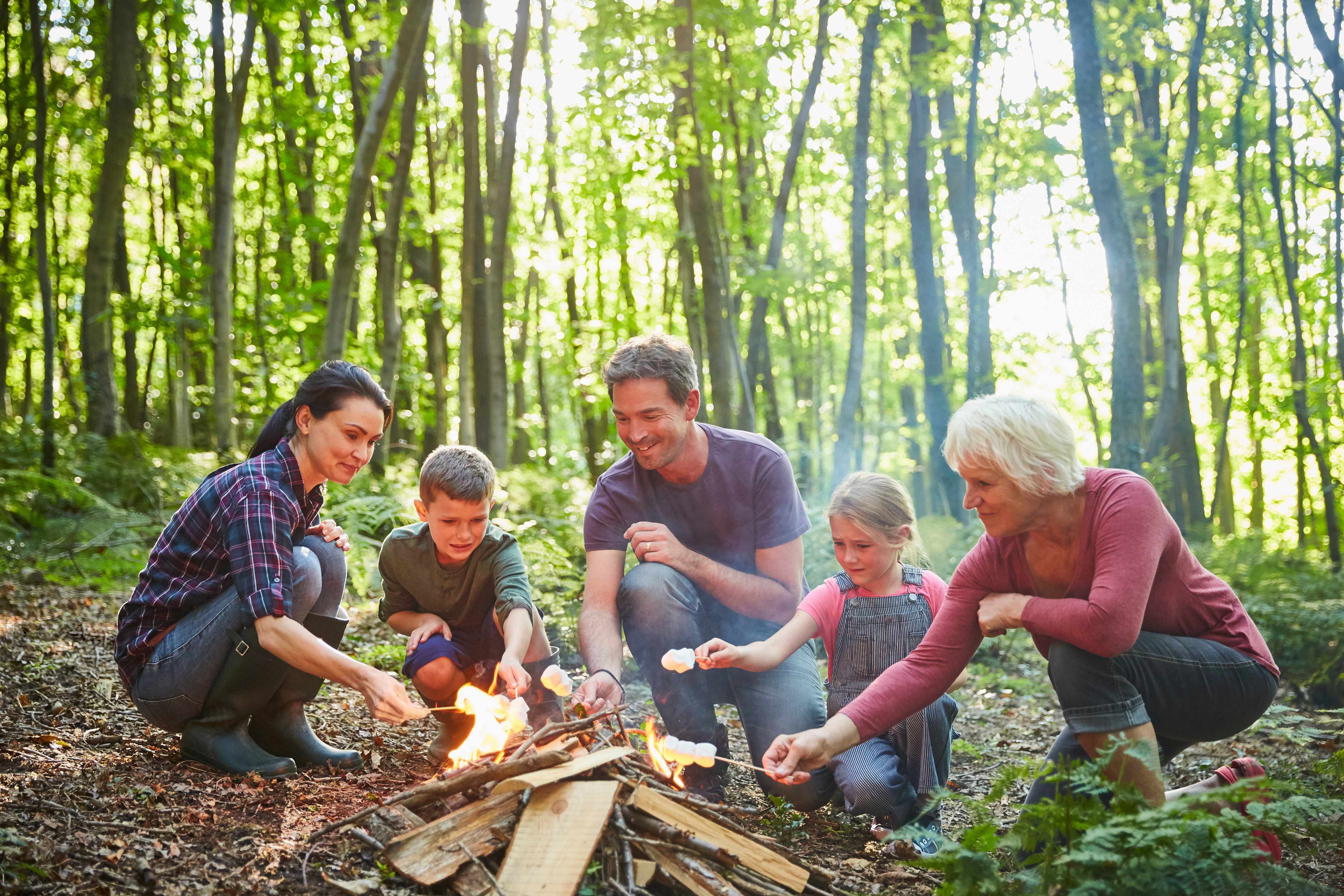 Family roasting marshmallows at campfire in forest
