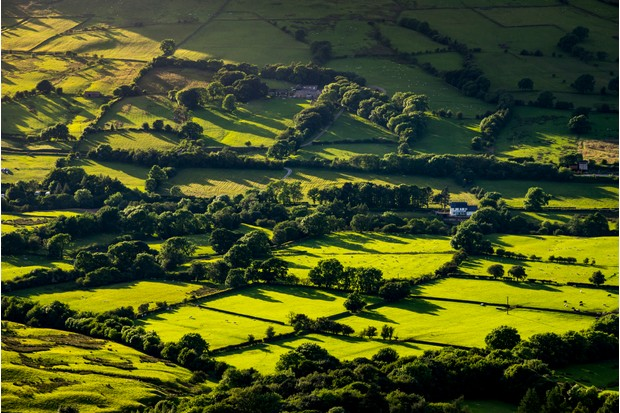 Low sunlight casting long shadows on a patchwork of fields in the Vale of Edale, Peak District, Derbyshire.