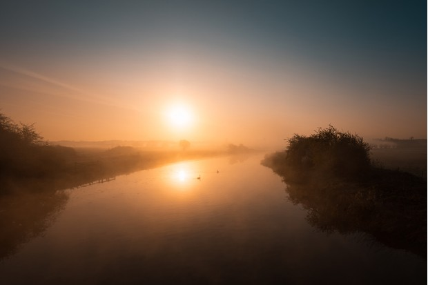 Two swans drifting along a misty River Nene at dawn at Woodford Lock in Northamptonshire, England as the sun rises.
