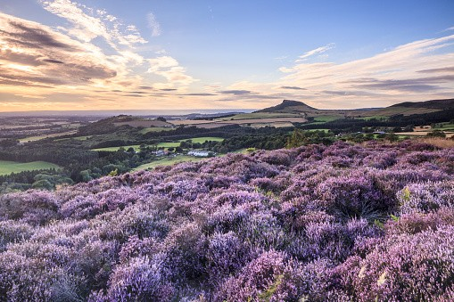 Roseberry Topping in the North York Moors.