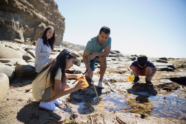 Latino family at tide pool on sunny craggy beach