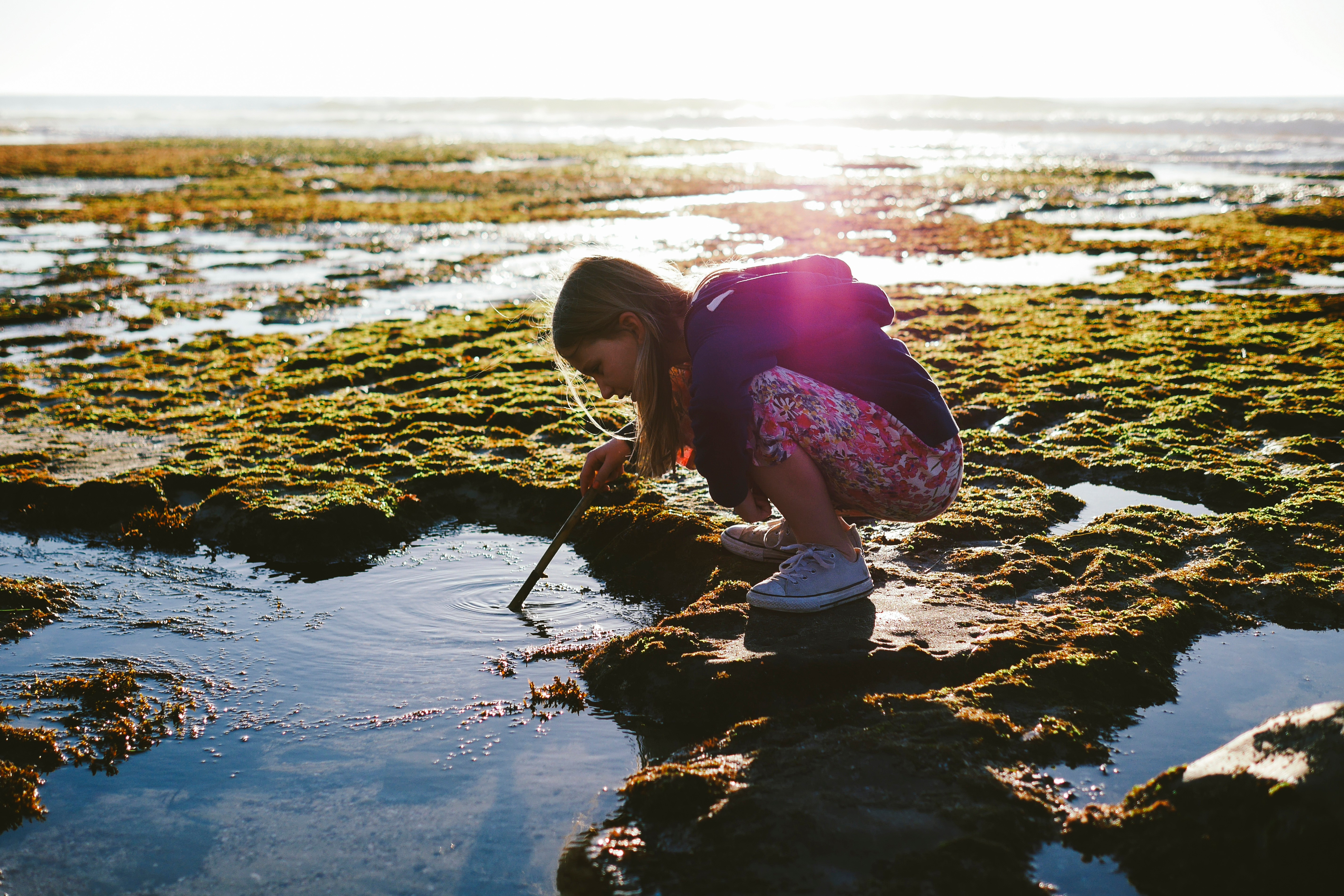 Full length side view of girl dipping stick in water at beach