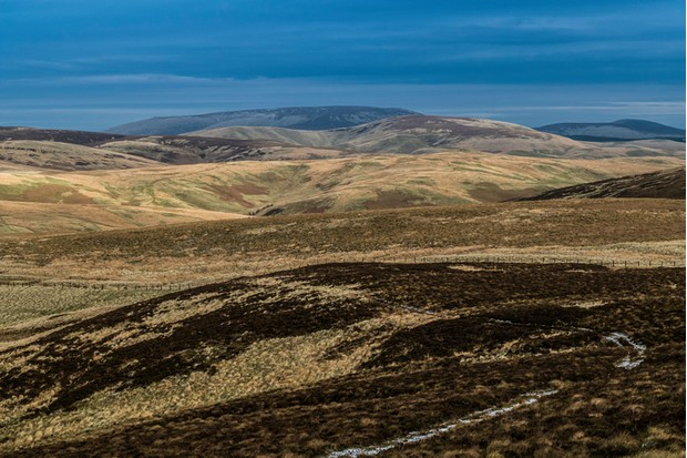Looking south east from Brownhart Law (508m) in the Cheviot Hills across Otterburn Firing Ranges to Big Cheviot (815m) on the skyline.