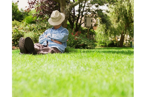 Senior man sleeping under tree in garden