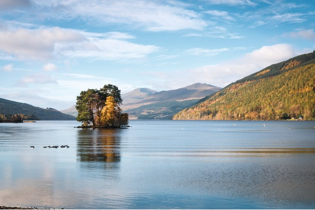 Trees on the Isle of Spar in Loch Tay, Scotland.