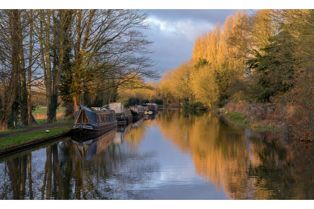 Canal and autumn trees