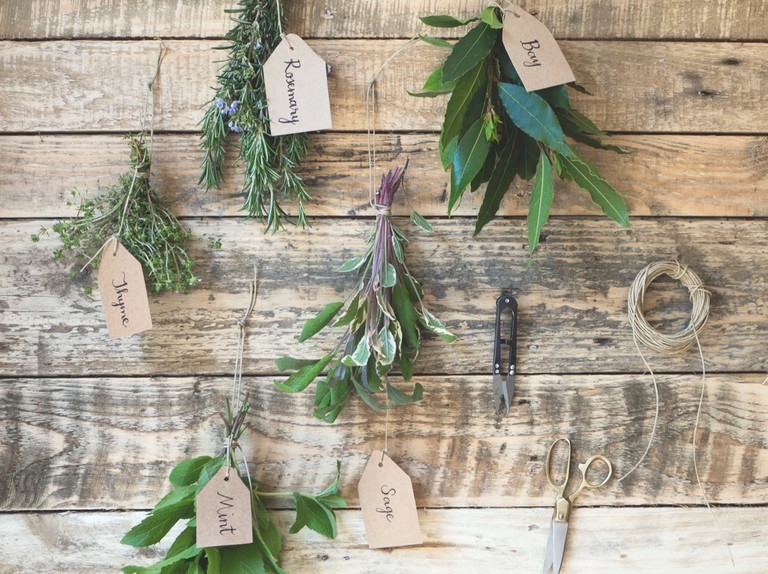 How to use your garden herbs