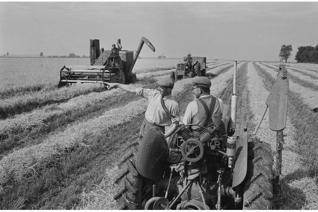 Harvest-1958-6d8967b