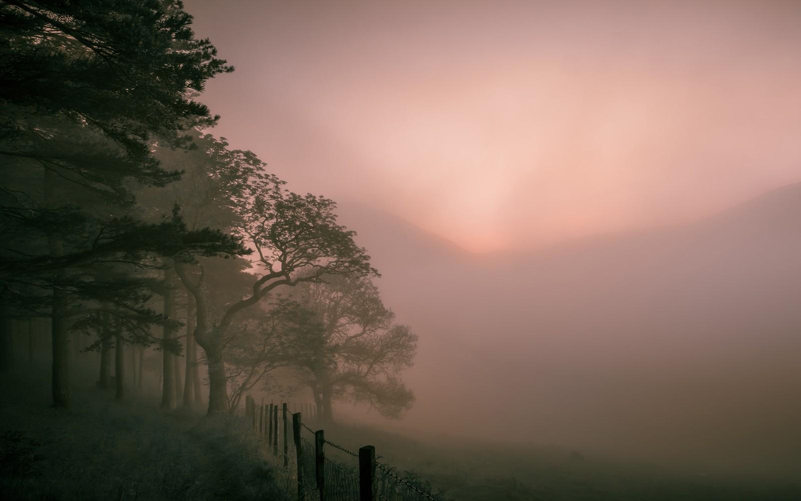 Holme-Wood-Cumbria-f6742ee