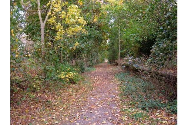 Hornsea_Rail_Trail_-_geograph.org_.uk_-_1528072-7bd9fb4
