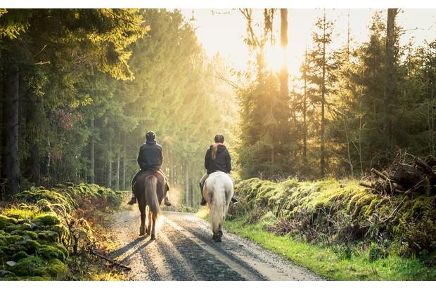 Horse-riding-702546223-3eb4909