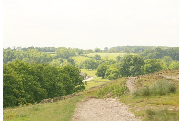 Charnwood Forest in Leicestershire