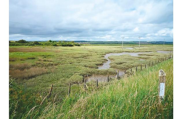 Isley Marsh