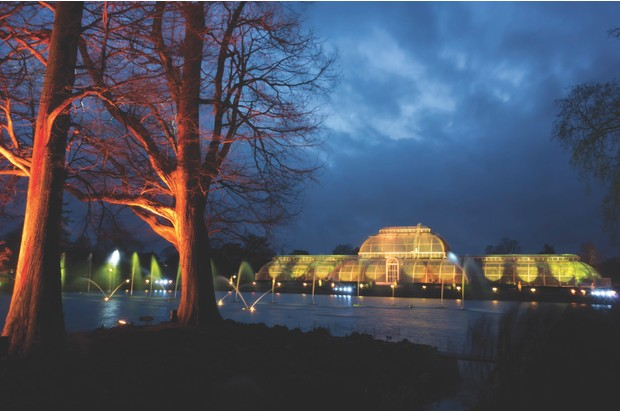 Palm House and trees surrounding lake are illuminated by different colour lights for Christmas